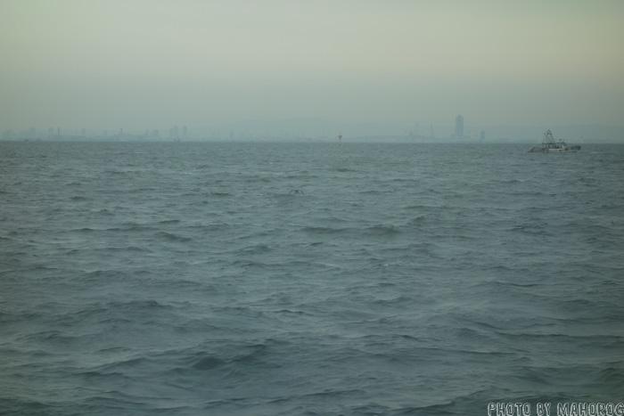 大阪湾からみる大阪
