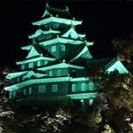 岡山後楽園の春の幻想庭園2017に行ってみた ライトアップされた岡山城も綺麗