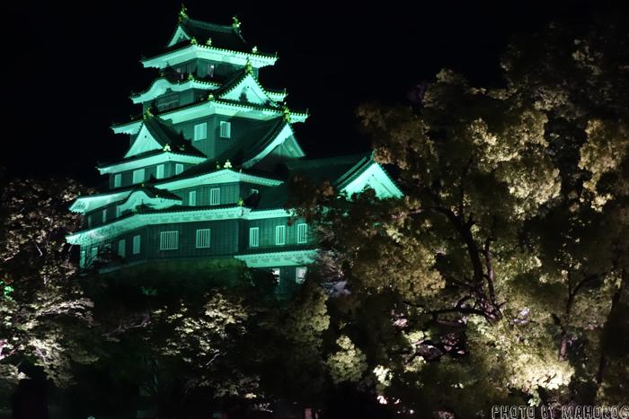 岡山後楽園の春の幻想庭園でライトアップされた岡山城