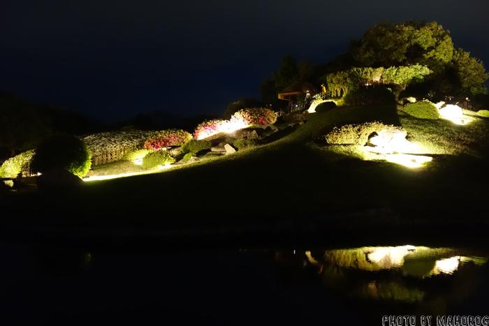 夜のライトアップされた岡山後楽園の唯心山