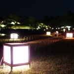 岡山後楽園の春の幻想庭園2018と西川緑道公園のキャンドルナイト