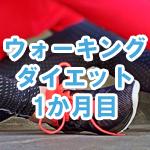 1日平均1万歩のウォーキングダイエット日記01 (食事制限・筋トレ無し)
