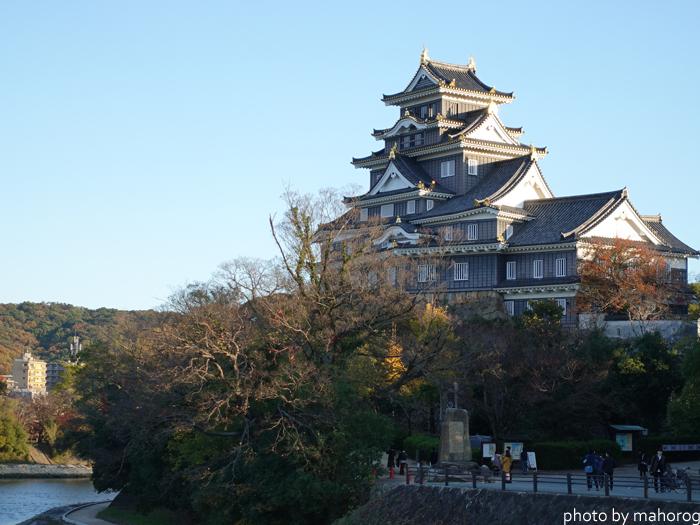 月見橋から見る岡山城