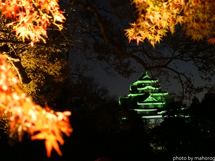 千入の森のもみじごしに見る岡山城