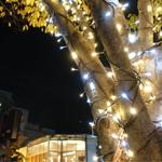 2018年11月の岡山市を散歩したので写真を撮ってみた!岡山ICOTNICOTがOPEN間近