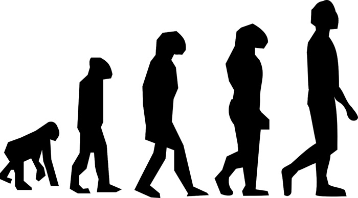 進化の過程