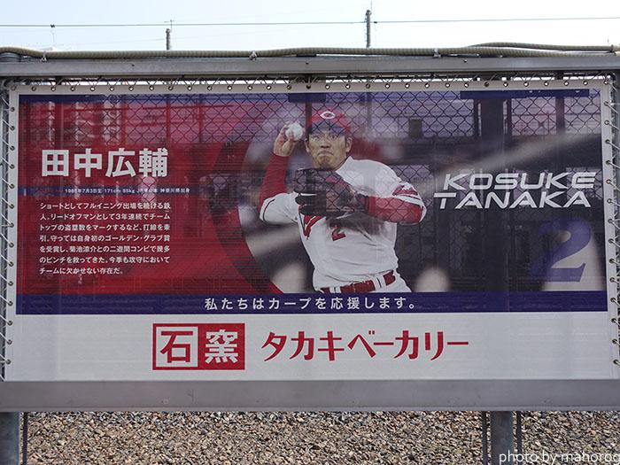 カープロードの田中広輔選手の写真